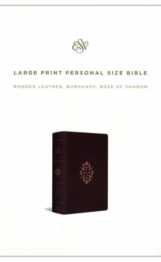 ESV LP Personal Size Rose of Sharon